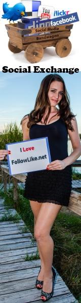 FollowLike
